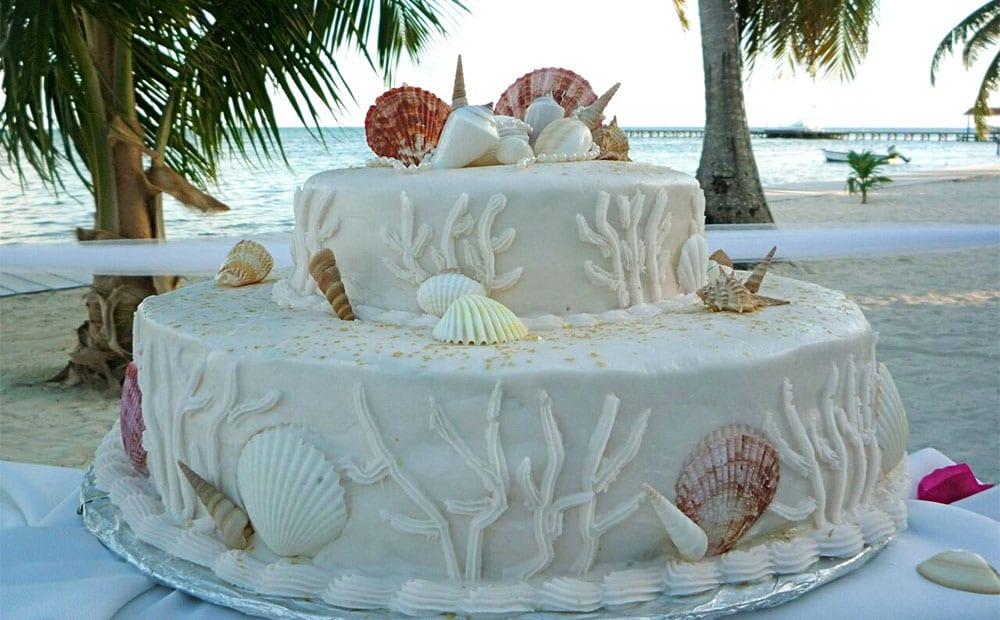shell-cake-optimized